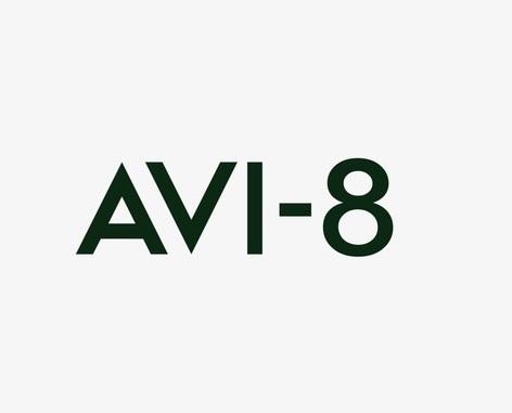 AVI-8 Brand at the Festival