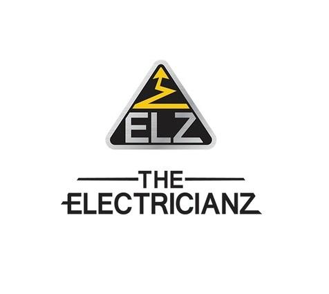 Marka Electricianz na Festiwalu
